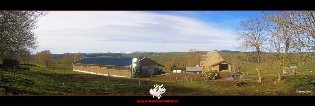 fromages fermier Salers et Saint-Nectaire - ferme de Saint Herem