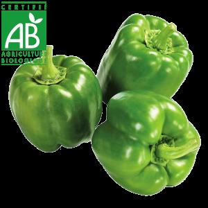 Poivons AB élevée en Agriculture biologique Auvergne