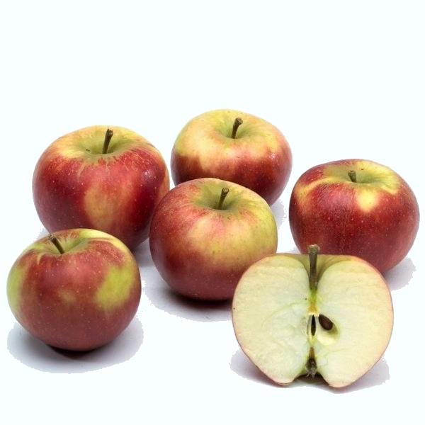 Pommes variété red star récoltées en Auvergne
