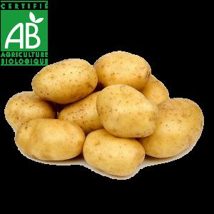 Pommes de terre AB élevées en Agriculture biologique