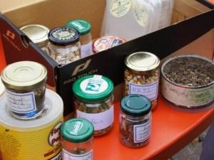 Echange de graines Cantal