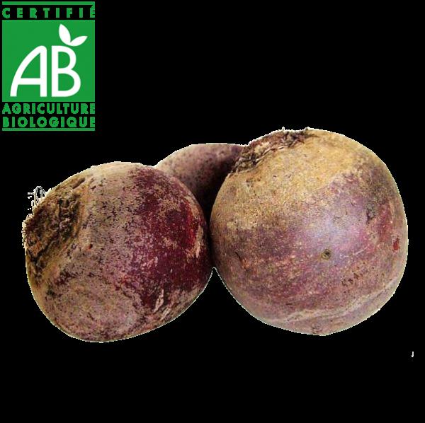 Betteraves AB élevée en Agriculture biologique vrac Auvergne