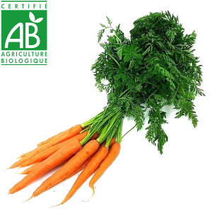 fruits et légumes bio Auvergne