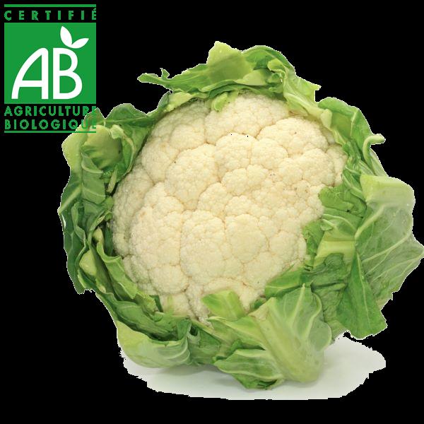 Chou fleur en agriculture biologique en vente au drive fermier d'Auvergne