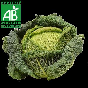 Chou vert frisé bio en vente au drive fermier en Auvergne
