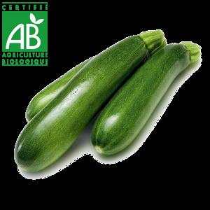 Courgettes en agriculture biologique en vente au drive fermier d'Auvergne