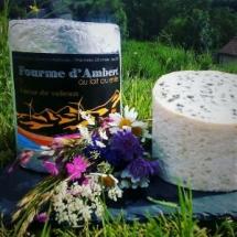 Fourme d'Ambert AOP au lait cru de la ferme du Puy de Coujoule