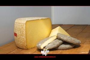 fromages au lait cru Salers et Saint-Nectaire - ferme de Saint Herem