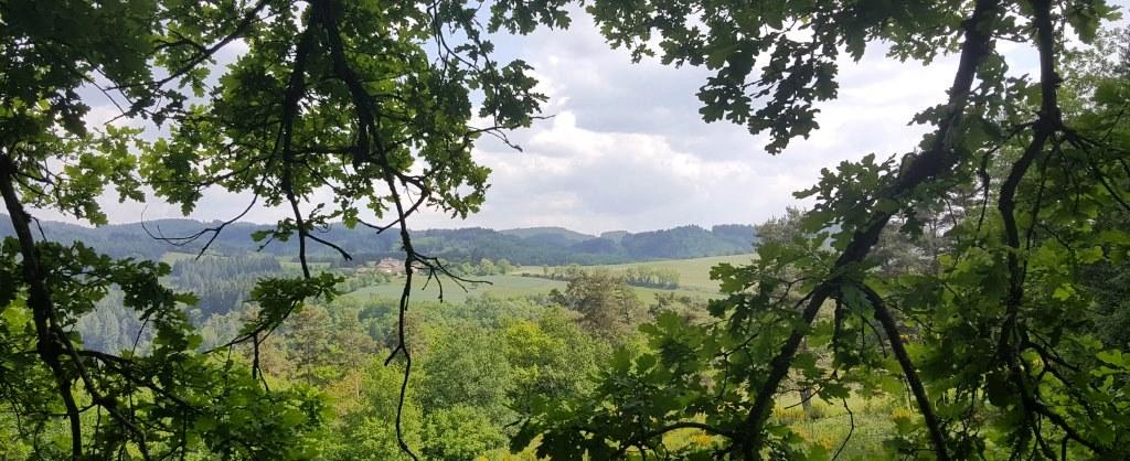 producteur distillateur eaux florales Auvergne