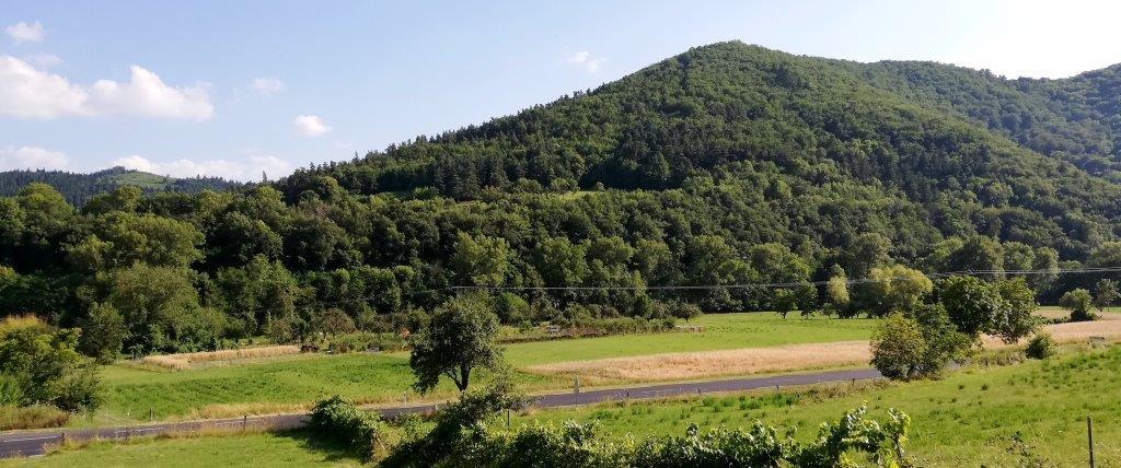 Maraîchaer à Massiac dans le Cantal en Auvergne