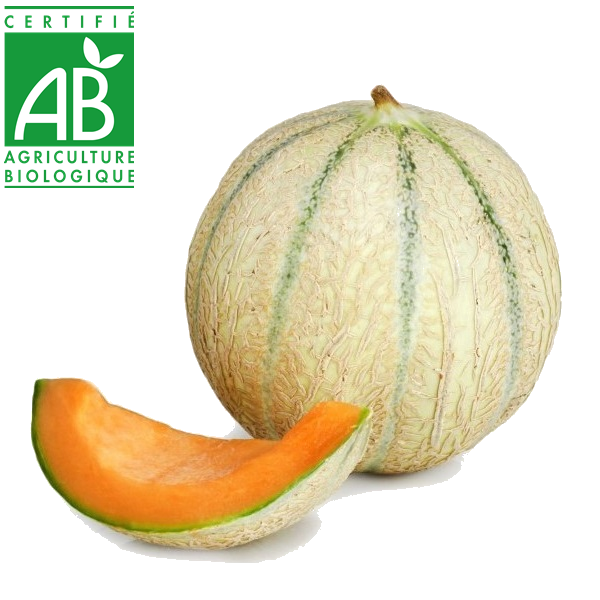 Melon : Fruits de producteurs d'Auvergne en vente directe en ligne