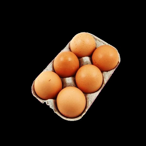 Œufs extra-frais fermiers bio d'Auvergne - vente directe - par 6