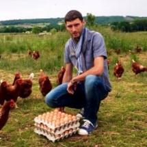 Papapoule : producteur de poulet bio et œufs bio en Auvergne