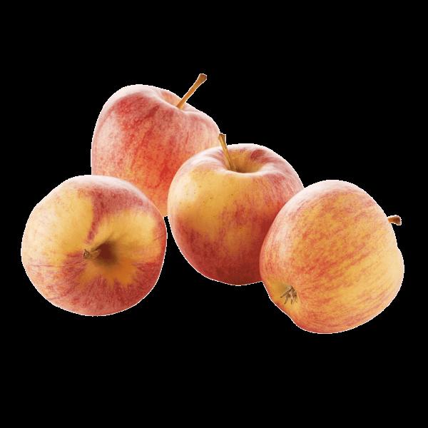 Pommes variété royal gala récoltées en Auvergne