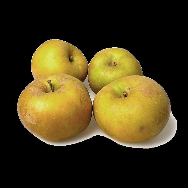 Pommes variété canada grise récoltées en Auvergne