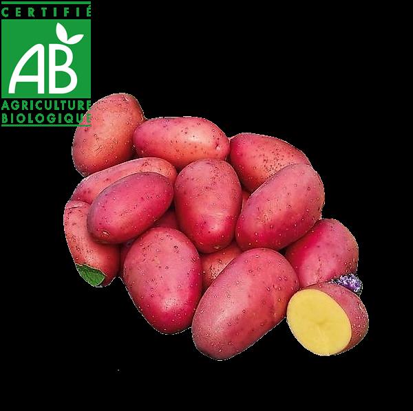 pommes de terre primeur bio vente en drive fermier