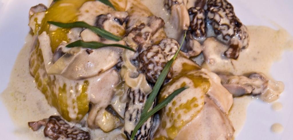Recette de poulet fermier aux morilles fraîches d'Auvergne