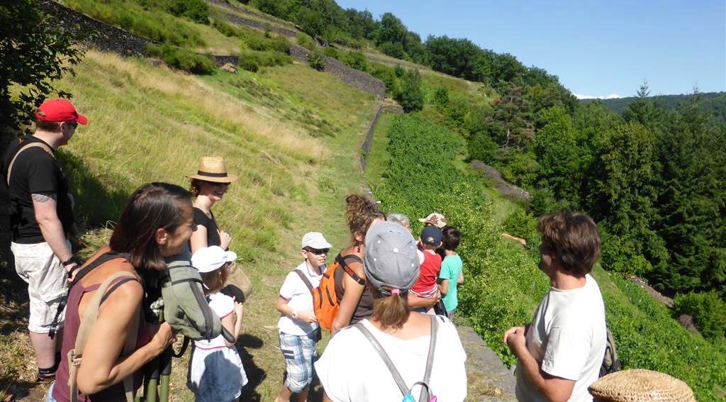 Visite de fermes, rencontre avec producteurs fermiers locaux en Auvergne
