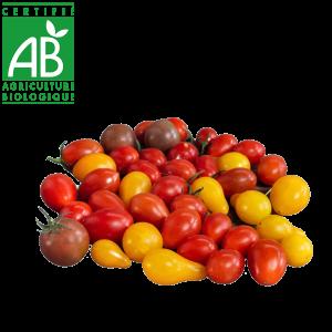 Tomates cerise AB produites en Agriculture biologique Auvergne