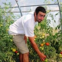 fruits et légumes d'Auvergne